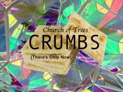 CRUMBS church of trees single