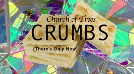 Single Review:  Crumbs (There's Only Now)